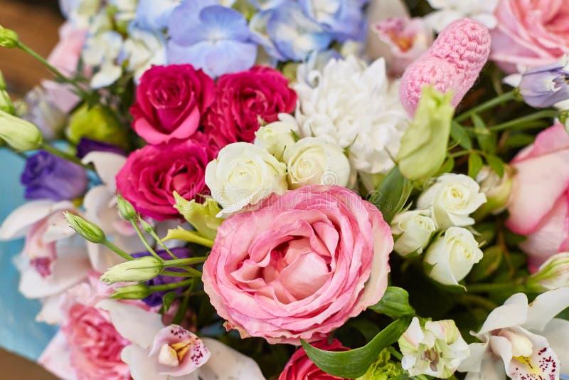 Härliga vårblommor i mjuka rosa färger och ljus - blåttfärger royaltyfria bilder