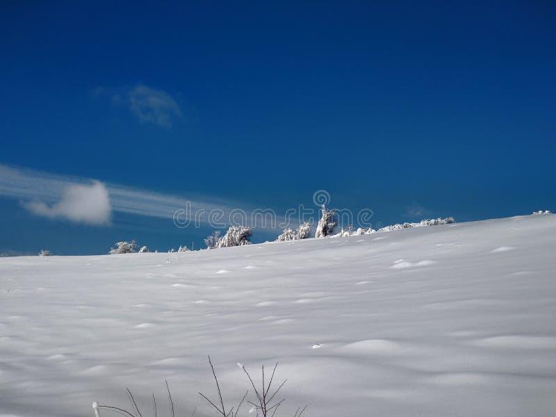 Härliga vinterlandskap med berg och snö-laden träd i byn av Parva, Rumänien, Transylvania royaltyfri fotografi