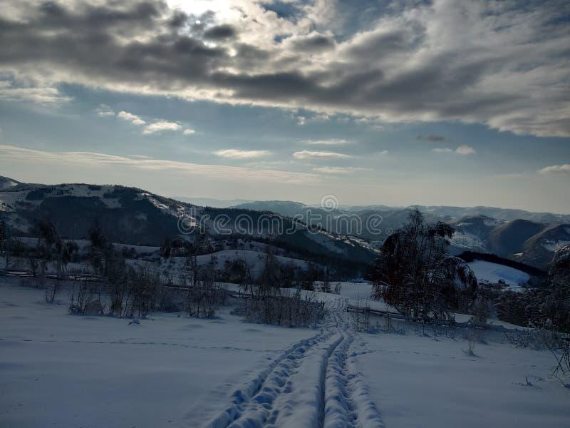 Härliga vinterlandskap med berg och snö-laden träd i byn av Parva, Rumänien, Transylvania royaltyfri bild