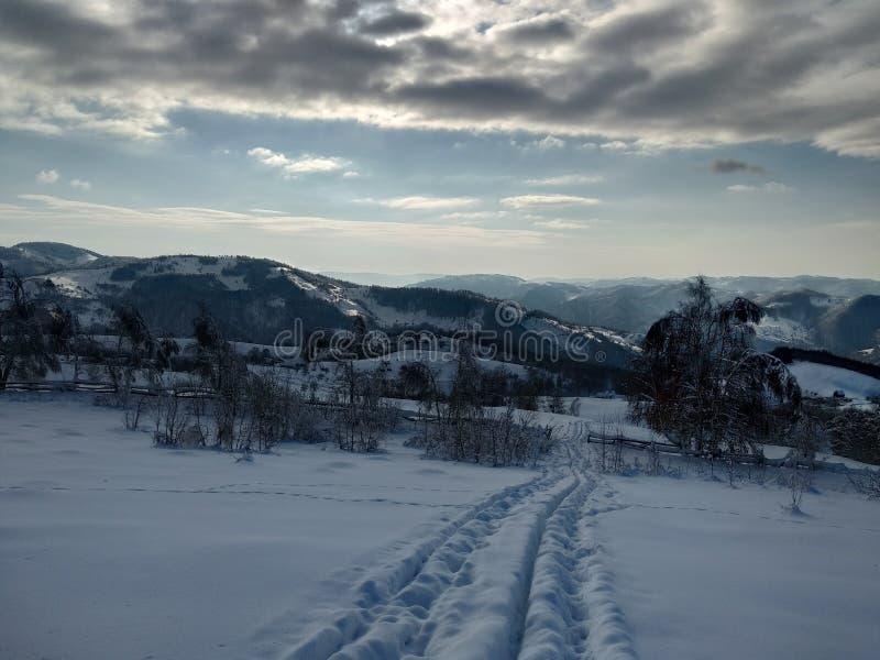 Härliga vinterlandskap med berg och snö-laden träd i byn av Parva, Rumänien, Transylvania arkivfoton