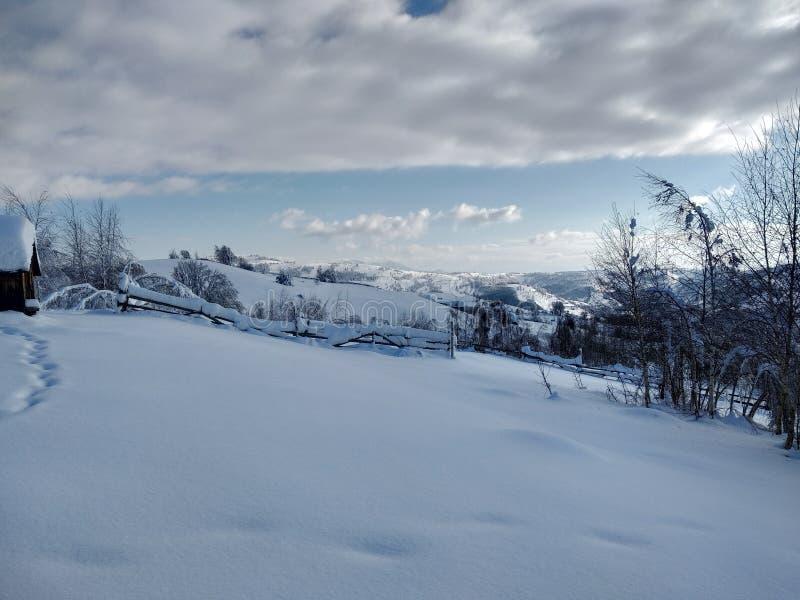 Härliga vinterlandskap med berg och snö-laden träd i byn av Parva, Rumänien, Transylvania arkivbild