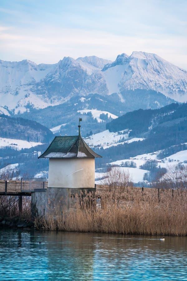 Härliga vinterscences på kusterna av den övreZurich sjön Obersee nära Hurden Schwyz och Rapperswil-Jona Sankt Gallen royaltyfri foto