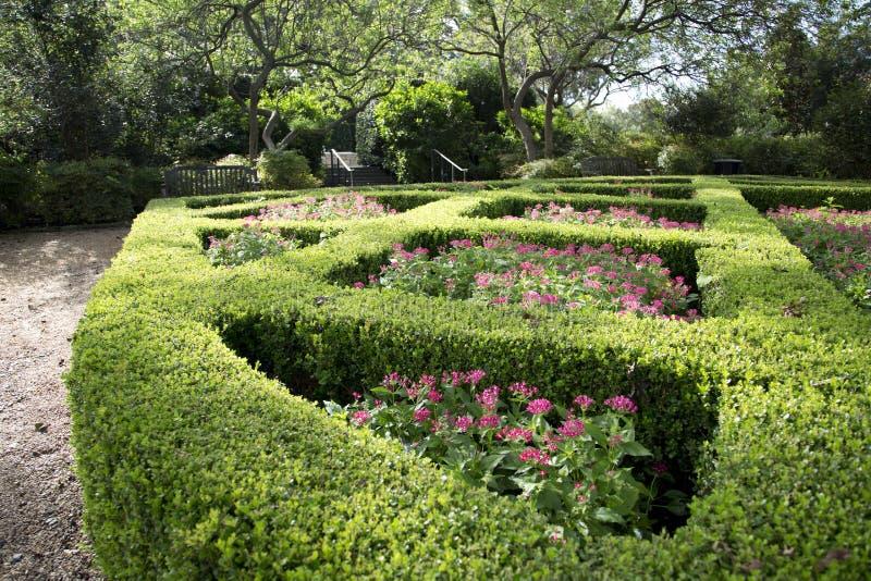Härliga Women& x27; s-trädgård i Dallas Arboretum arkivbilder