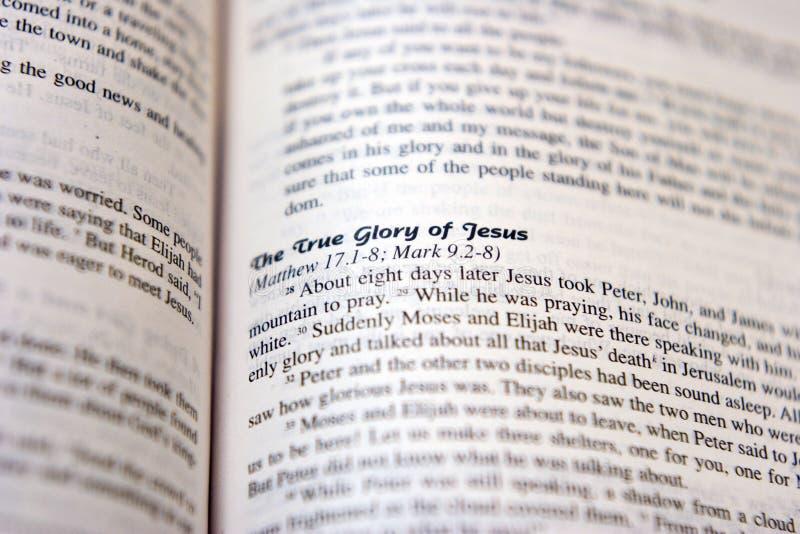 härlighet jesus royaltyfri foto