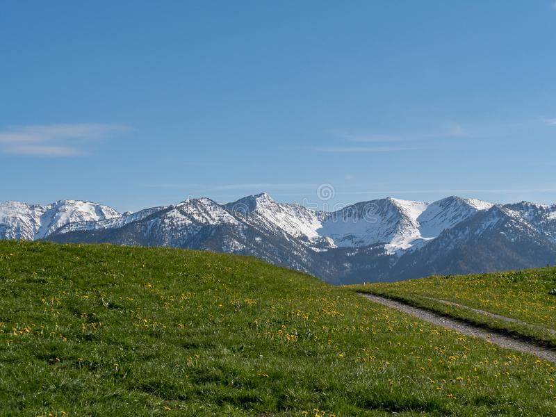 Härligt alpint landskap med ängen och fjällängar i Bayern arkivfoto