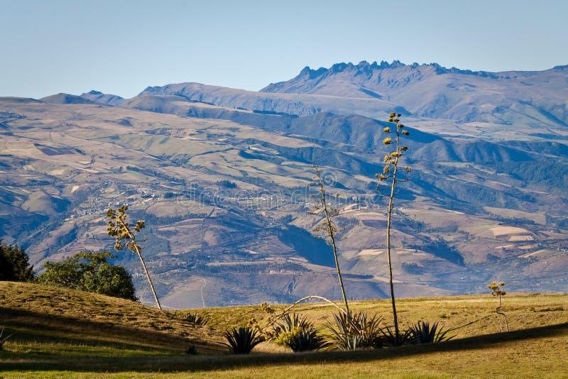 Härligt andean landskap i Cochasqui fotografering för bildbyråer