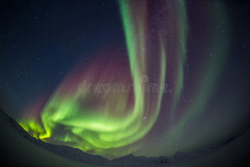 Härligt arktiskt berglandskap med nordliga ljus - Spitsbergen, Svalbard arkivfoto