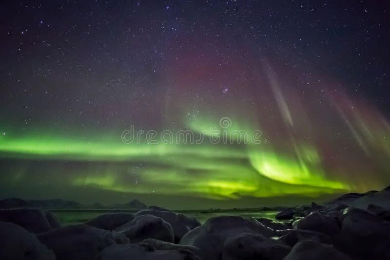 Härligt arktiskt fjordlandskap med nordliga ljus - Spitsbergen, Svalbard royaltyfri fotografi