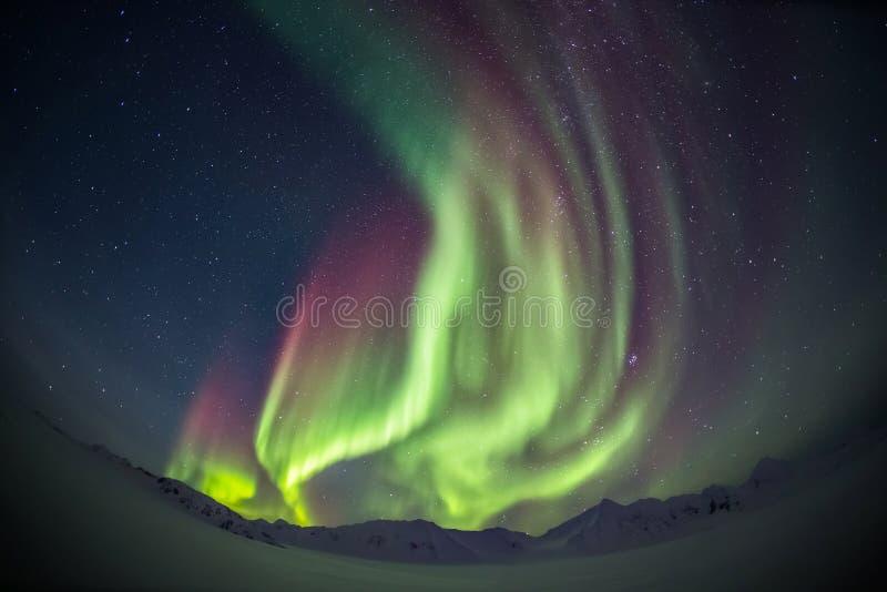 Härligt arktiskt glaciärlandskap med nordliga ljus - Spitsbergen, Svalbard royaltyfri bild