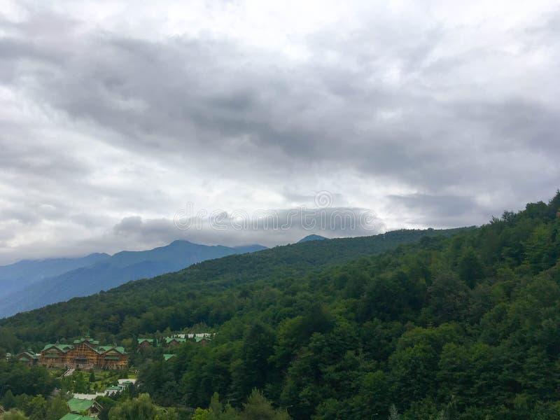 Härligt berg i skogen royaltyfria bilder