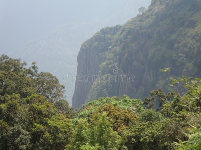 härligt berg med grönska fotografering för bildbyråer