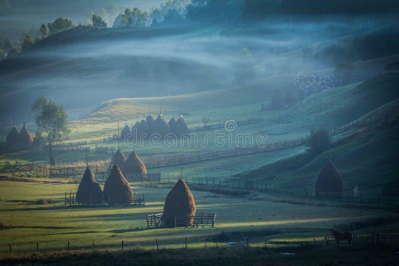 Härligt berglandskap i den dimmiga höstmorgonen royaltyfri bild