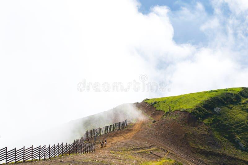 härligt berglandskap Sommar i bergen Folket rider hästar i bergen på hög höjd Landskap Sochi Russi fotografering för bildbyråer