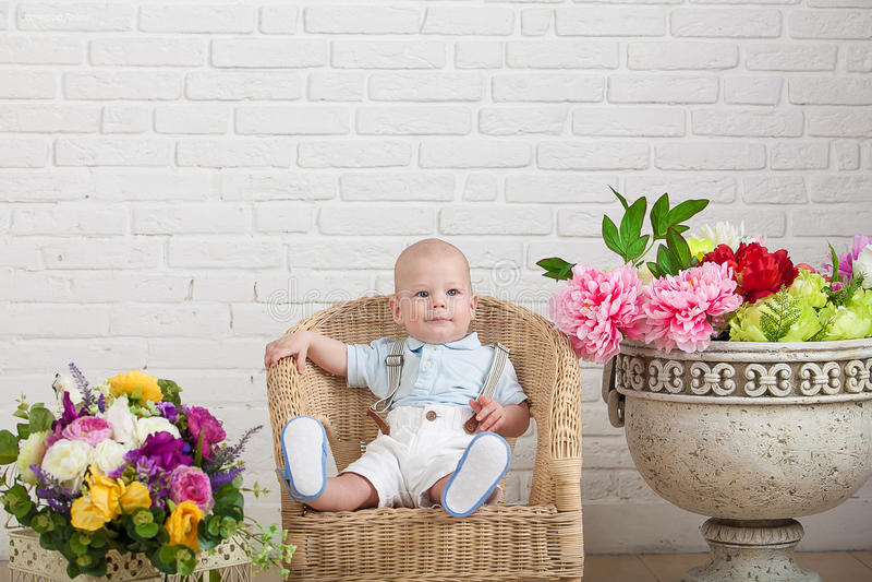 Härligt blåögt behandla som ett barn i en vide- stol, bredvid en vas av blommor arkivbilder