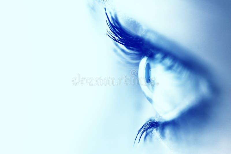 härligt blått öga royaltyfri foto
