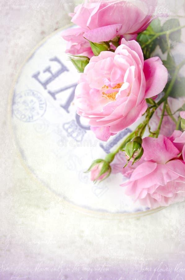 Härligt blom- kort med förälskelse för dig Försiktiga rosor för lösa rosa färger med gåvaasken fotografering för bildbyråer
