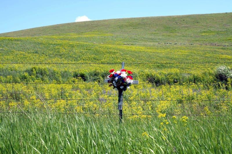 Härligt blommakors vid vildblommor royaltyfria bilder