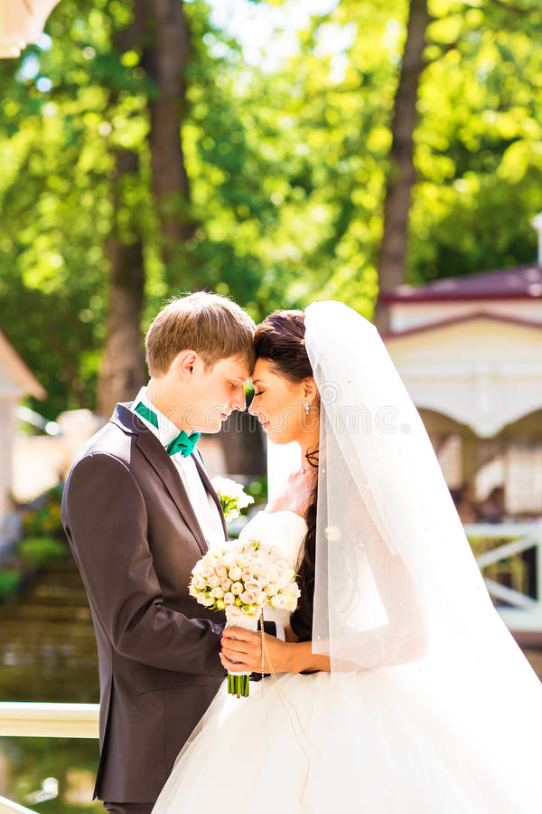 Härligt bröllop, maken och frun, vänner man kvinnan, bruden och brudgummen royaltyfri foto