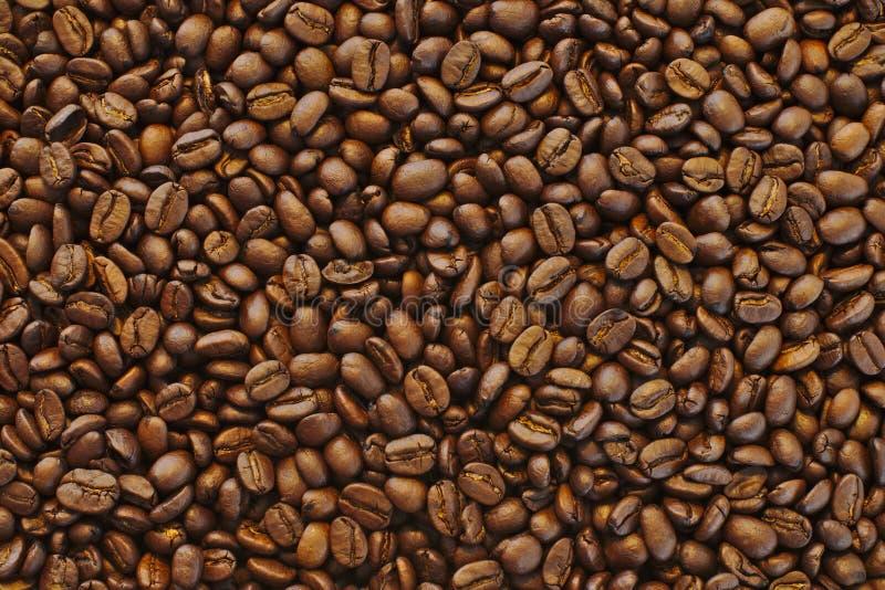 Härligt closeupskott av bruna nya bönor för svart kaffe - perfekt bakgrund eller tapet fotografering för bildbyråer