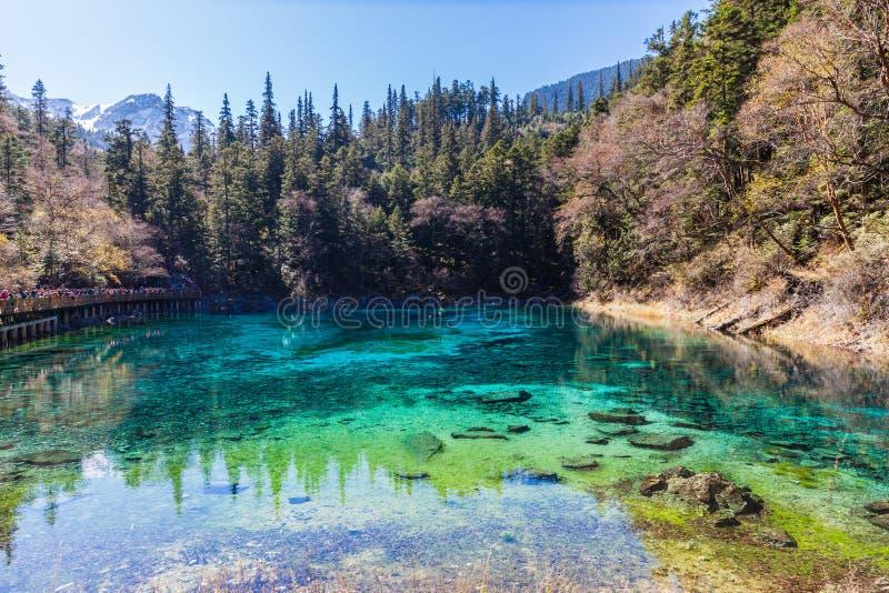 Härligt damm i den Jiuzhaigou nationalparken arkivbilder