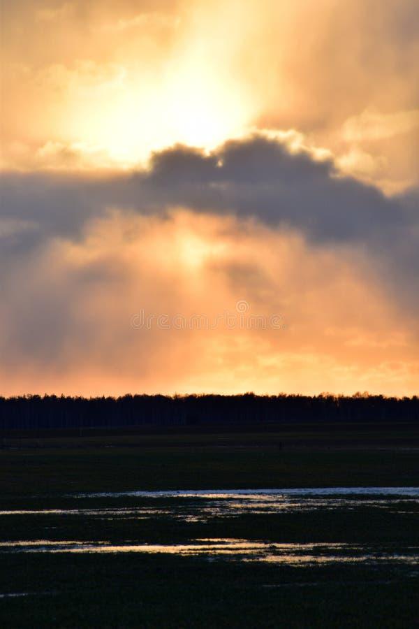 Härligt flammande solnedgånglandskap över ängen royaltyfri foto