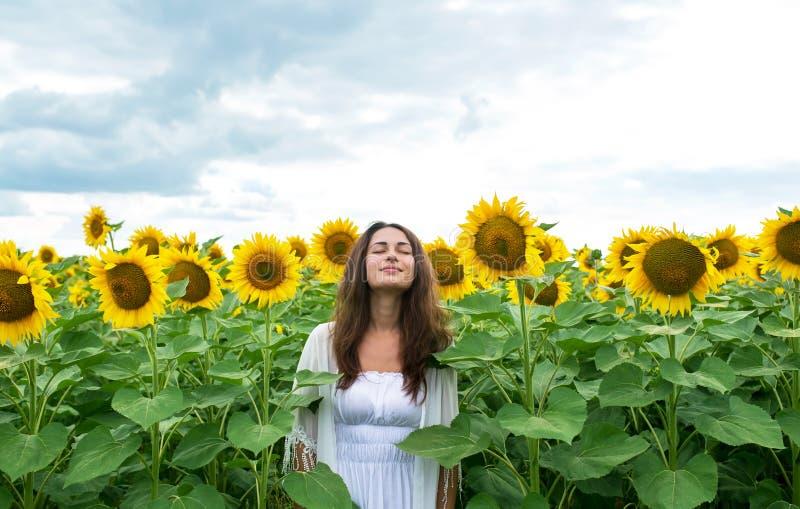 Härligt flickaanseende som kopplas av i solrosfält royaltyfria foton