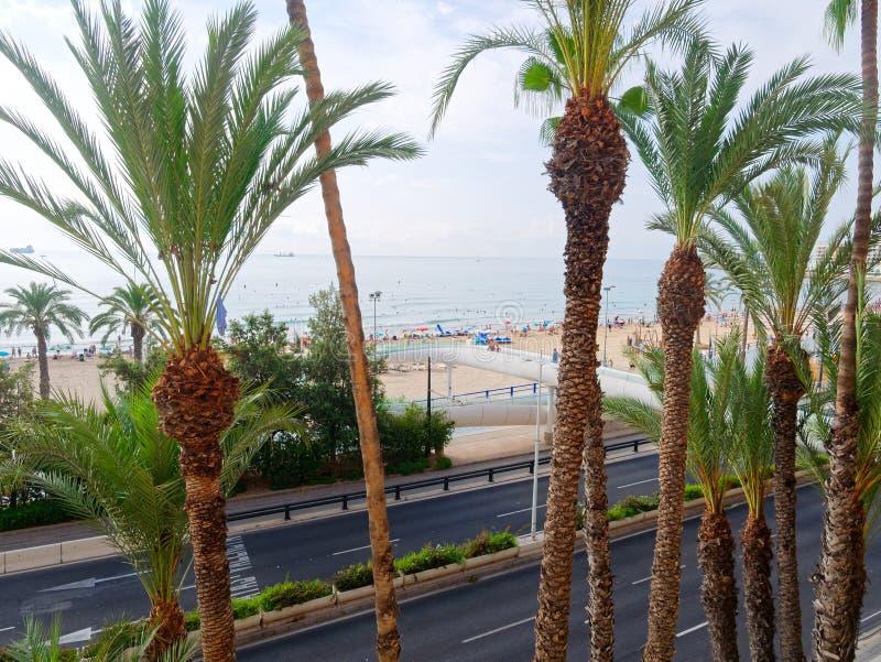 Härligt gömma i handflatan och stranden i Alicante spain arkivfoto