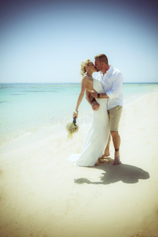 Härligt gift par på en tropisk strandbröllopdag royaltyfria bilder