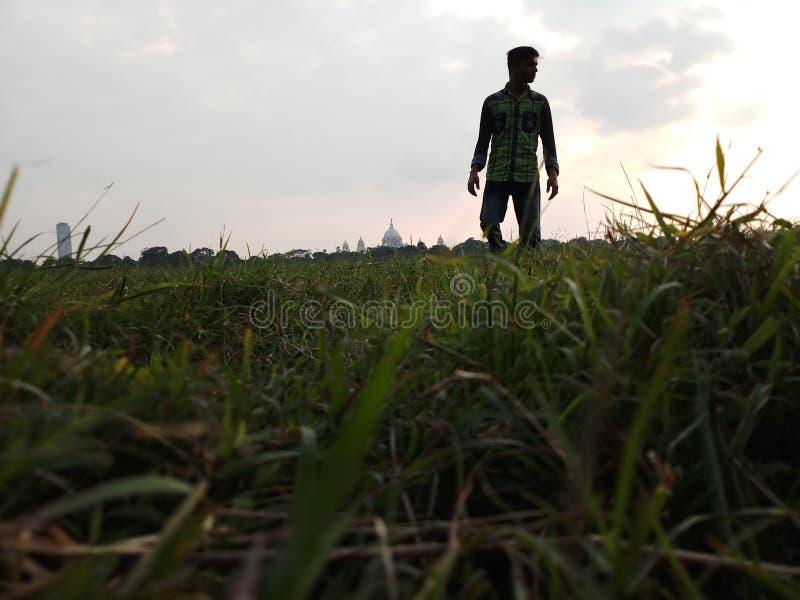 Härligt gräs för väder n royaltyfria foton
