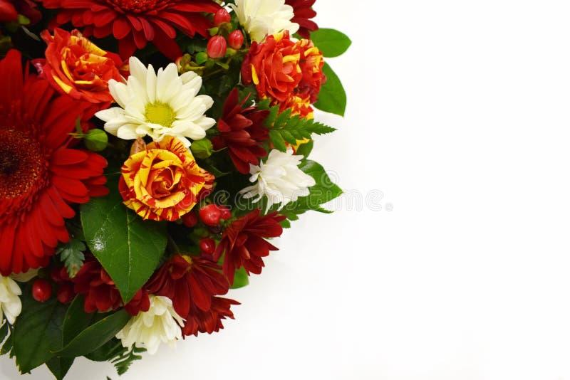 Härligt hälsningkort för blomma kopiera avst?nd royaltyfri fotografi