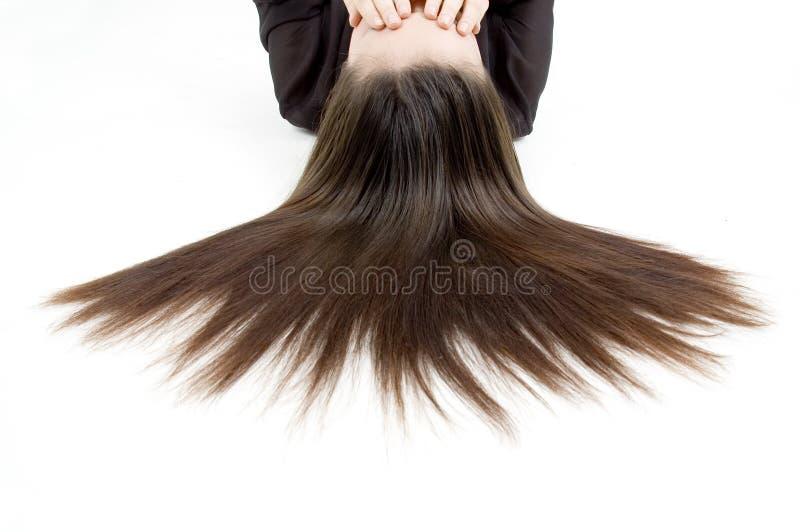 härligt hår arkivbilder