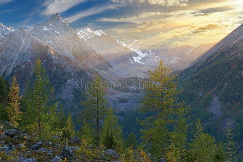 Härligt höstlandskap, Altai berg Ryssland royaltyfri foto