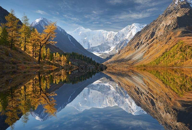 Härligt höstlandskap, Altai berg Ryssland royaltyfri fotografi