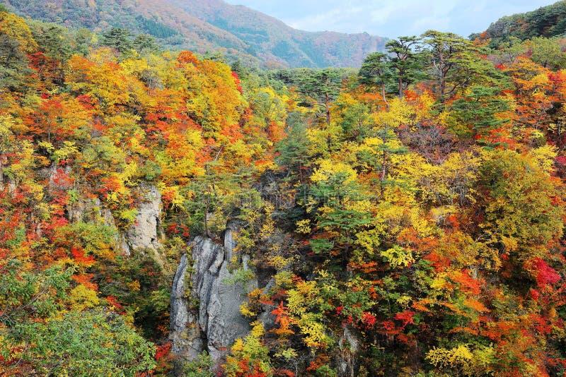 Härligt höstlandskap av den Naruko klyftadalen med färgrik lövverk arkivbild