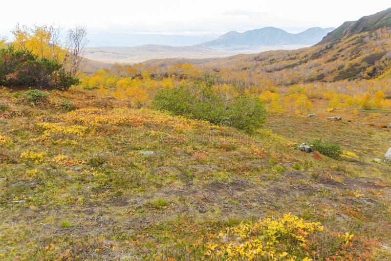 Härligt höstlandskap i berg i Kamchatka arkivbild