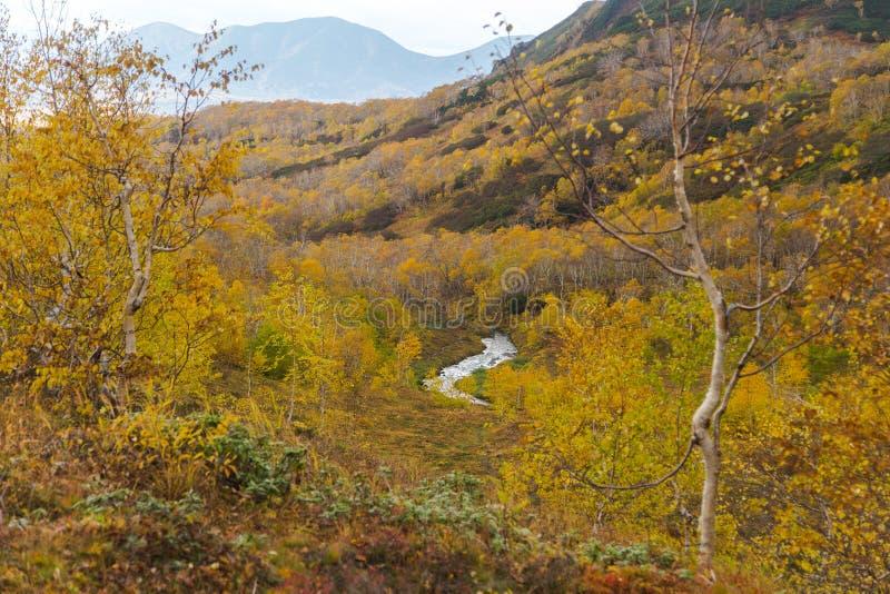 Härligt höstlandskap i berg i Kamchatka arkivbilder