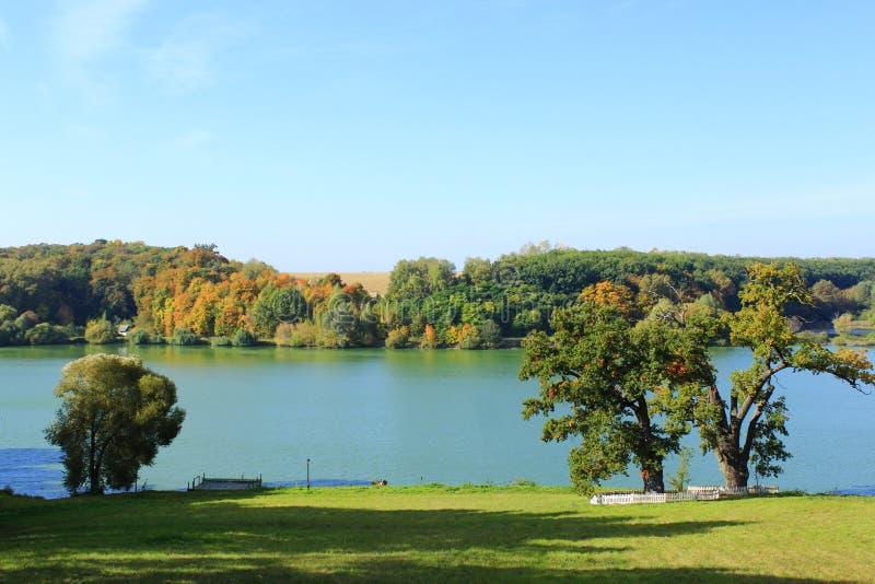 Härligt höstligt landskap med sjön och träd royaltyfri bild