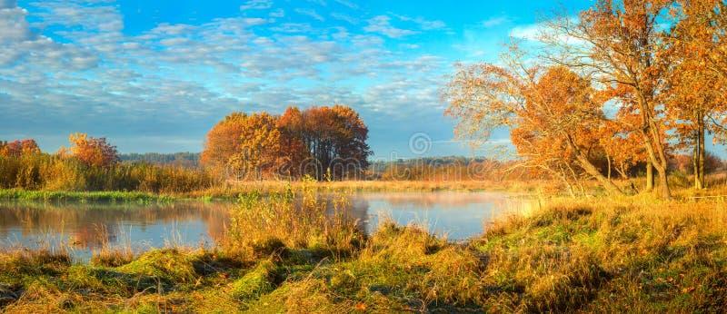 Härligt höstnaturlandskap på flodstranden Scenisk flodnatur i den oktober säsongen fall Landskaphöstträd med guld- och royaltyfri fotografi