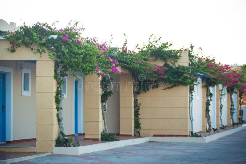 Härligt hotell i Kos royaltyfri fotografi
