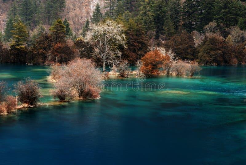 härligt jiuzhaidalvatten royaltyfri bild