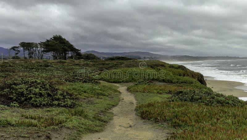 Härligt kustlandskap i Kalifornien arkivfoton