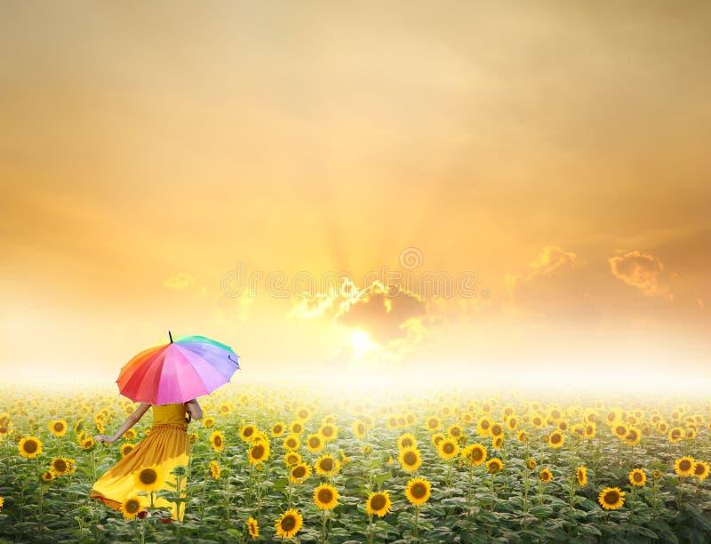 Härligt kvinnaholdingparaply i solnedgång arkivfoto