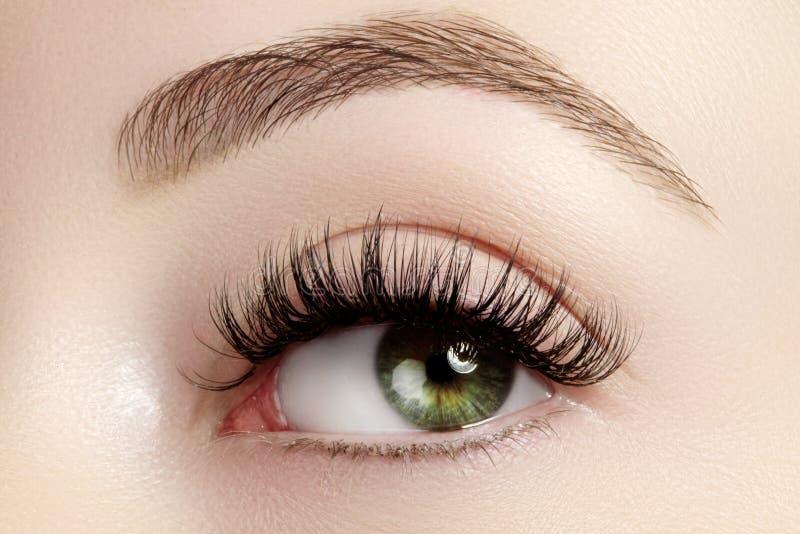 Härligt kvinnligt öga med extrema långa ögonfrans, svart eyelinermakeup Perfekt smink, långa snärtar Closeupmodeögon arkivfoton