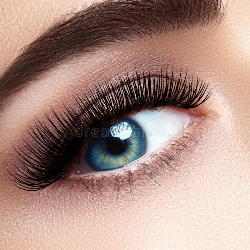 Härligt kvinnligt öga med extrema långa ögonfrans, svart eyelinermakeup Perfekt smink, långa snärtar Closeupmodeögon arkivbild