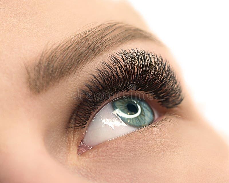 Härligt kvinnligt öppet blått öga med ögonfransförlängning Naturlig och väl ansad hud N?ra ?vre, selektivt fokuserar royaltyfria bilder