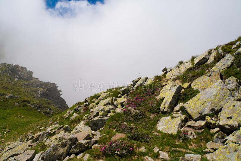 Härligt löst landskap med steniga berg i morgonmisten royaltyfria foton