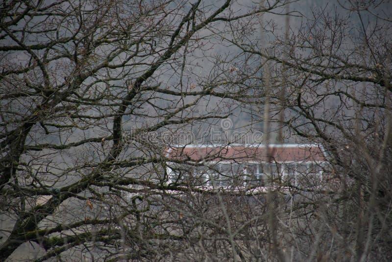 Härligt landskap av berg och skogen med bybyggnad eller det gamla övergav förstörda tegelstenhuset Dimmig skog och gammal buildi arkivfoto