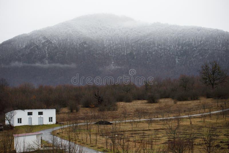 Härligt landskap av berg och skogen med bybyggnad eller det gamla övergav förstörda tegelstenhuset Dimmig skog och gammal buildi arkivbild