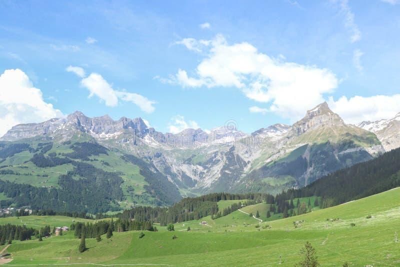 Härligt landskap av berget i Schweiz arkivbild