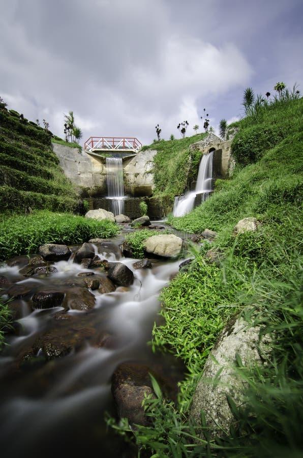 Härligt landskap av den gömda vattenfallet med molnig himmel i mitt av telantgården på Cameron Highland, Malaysia royaltyfri bild